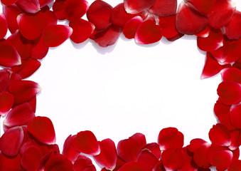 рамка из лепестков роз