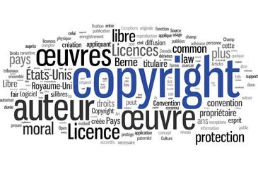 Copyright (français)