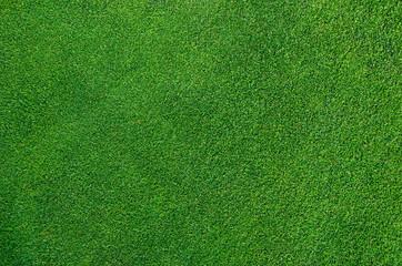 Perfect Golf Green