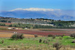 Travel Photos of Israel - Mount Hermon