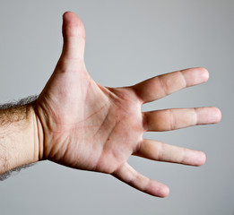 Open male hand showing palm and open fingers
