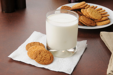 Ginger snap cookies and milk