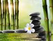 spa stones,bamboo  with frangipani