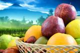 Fresh Fruit with natural landscape background