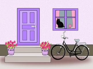 Door, Window and Bicycle and Cat