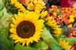 Sonnenblumen, Blumenmarkt, Sommerblumen