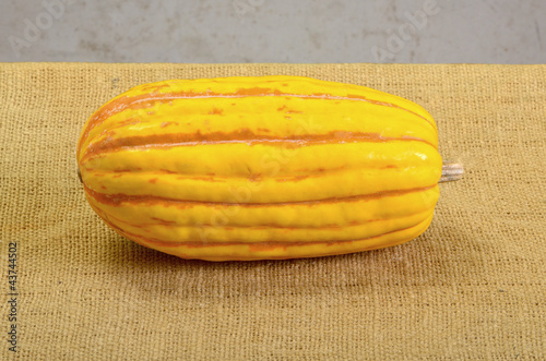 Yellow Delicata Squash