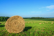 Round Hay Bale in Green Field