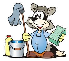 Sprzątanie Racoon