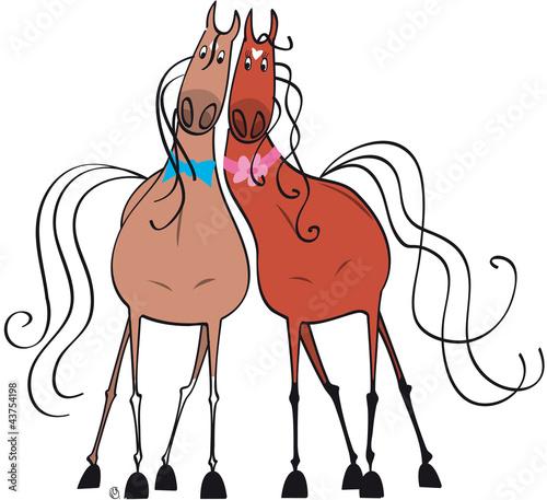couple de chevaux amoureux jument baie & hongre alezan