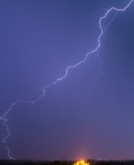 Very long and tortuous lightning