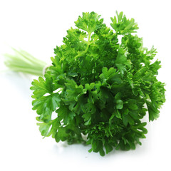 Herb Series - Parsley