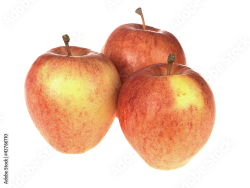 Red Sonya Apples