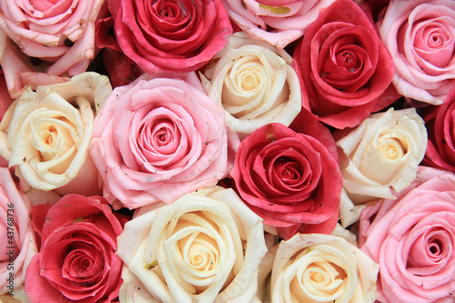 White and pink roses in arrangement
