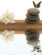 concept relaxation ; papillon, frangipanier, galets