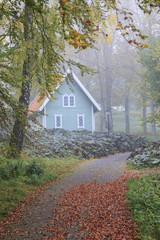 Footpath through the autumn park