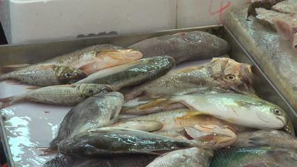 Fish for sale, street market, Hong Kong