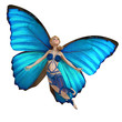 elf butterfly is flying