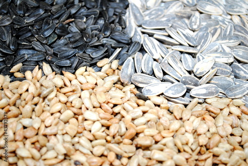 Assortment of 3 Types of Sunflower Seeds