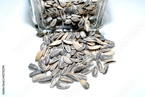 Sunflower Seeds Spilling Out of a Jar