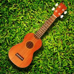 ukulele on green grass texture