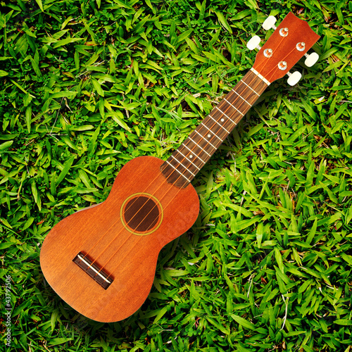 ukulele on green grass texture
