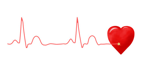 ECG graph and heart