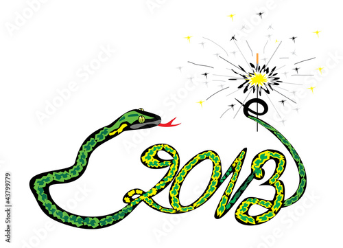 green snake 2013 with a sparkler