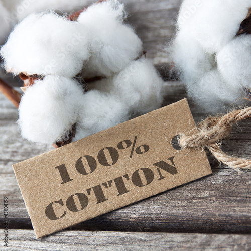 Baumwolle - Cotton