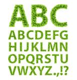 Green Leaves font
