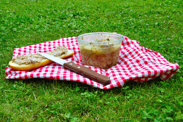 Déjeuner sur l'herbe