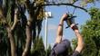 Man Taking Down Bird Feeder