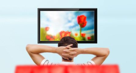 Adult man watching educational channel about nature by tv