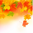 Autumn background with leaves. Back to school