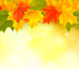 Fototapety Autumn background with leaves. Vector illustration