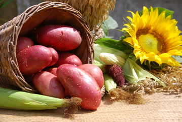 red organic potatoes