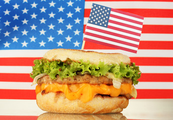 tasty sandwich, on american flag