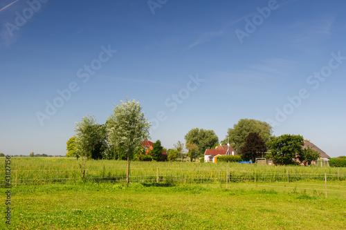 Dutch landscape in Groningen