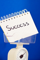 weight of success, balance measuring pros & cons