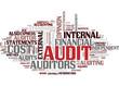 Audit (english)