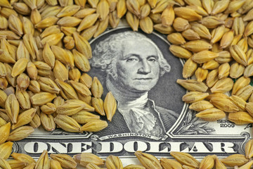 dollar in korn