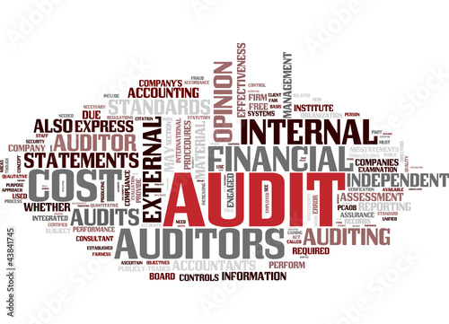 Audit (english)