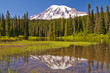 The Reflection Lake and Mt Rainier