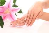 Beautiful woman hands and lily flower - 43851517