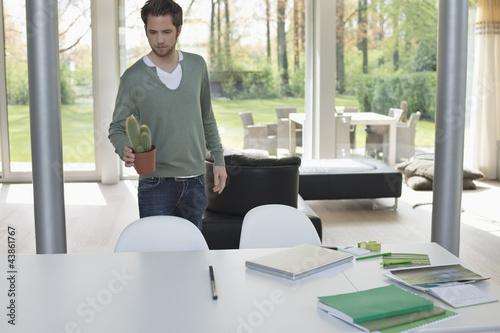 Man holding a cactus plan