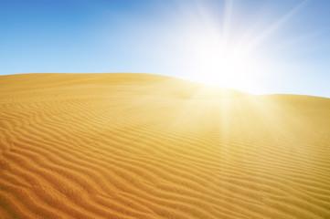 Gold desert. Sunny day. Blue sky.