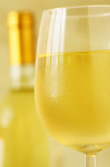 Glass and bottle of fine italian white wine, closeup