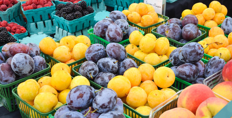 Organic plums at Farmers Market