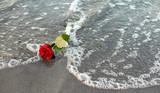 Rose zum Abschied