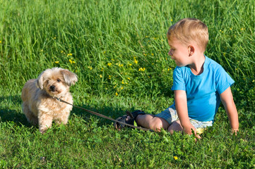 Kleiner Junge mit Hund im Gras